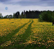 Green road by Antanas
