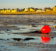 Red Buoy at Low Tide by AmyRalston