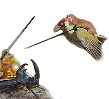 weasel riding woodpecker versus frog riding beetle by SneuvelNation
