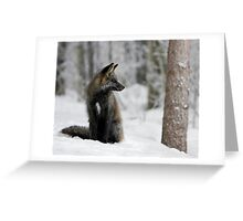 Silver Fox in Snow Greeting Card