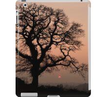 Lone tree at sunset in Devon iPad Case/Skin