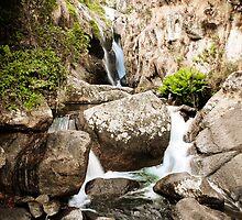 Above Likabula Falls, Mt. Mulanje, Malawi by Tim Cowley
