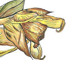 Messy daffodil painting by Eleanor Bateman
