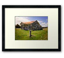 I'm Still Standing - NZ  Framed Print