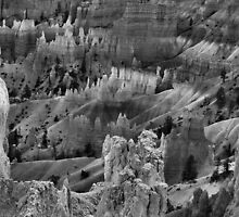 Bryce Canyon In Black And White by Stephen Vecchiotti