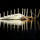 Fish Carcass by DJ LeMay