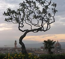 Firenze from Piazzale Michelangelo by Kymbo
