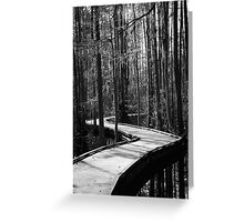 Boardwalk at Woods Bay State Park Greeting Card