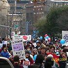 Pro Life Parade/ Austin, Tx by Sarai