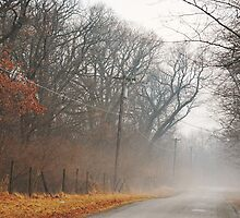 Foggy Road Home by mnkreations