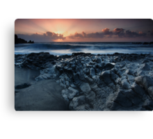 On the Lava Shore Canvas Print