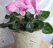 Potted Cyclamen by Margie Avellino