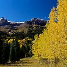 Ouray Color by Robert Yone