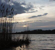 Squibnocket Pond Sunset by Allison  Colarusso