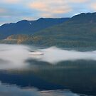 Out of the Fog by Robert Yone
