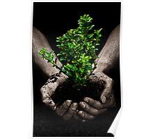 Tree in Hands Poster
