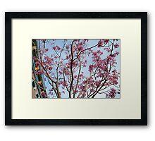 Flowers in the park Framed Print