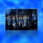 Michigan Winter Sky by Photophatty67