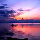 Silent Harmony by anwarsalim