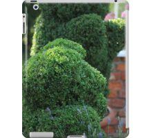 green bear topiary iPad Case/Skin