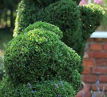green bear topiary by mrivserg