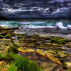 grass on rocks by Rodney Trenchard