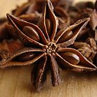 Anise Star by Caroline Fournier