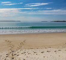 Husskinson NSW Australia by Allport Photography