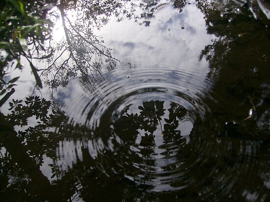 Rippled reflection by Hannah Fenton-Williams