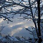 Suburban Winter by Jeff Stroud