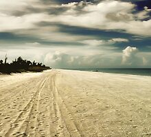 sanibel beach by Luca Renoldi