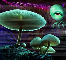 SPACE SHROOMS by DALE CRUM