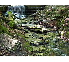 Iargo Springs Photographic Print