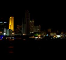Miami Skyline by robbievandalen