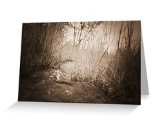 untitled~6 Greeting Card