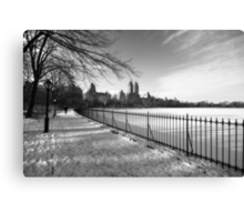 Central Living Canvas Print