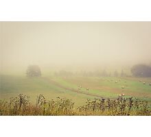 Fog And Hay Bales Photographic Print