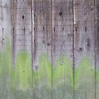 Shrine walls (3 of 4) by Nick Lowe
