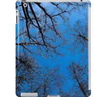 Blue heaven on earth iPad Case/Skin