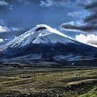 Cotopaxi Volcano by Bernai Velarde