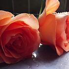 Sweet rosedrops by Joyce Knorz