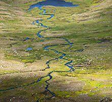 Hornstrandir landscape by thonycity