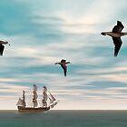 Black-footed Albatross by Walter Colvin