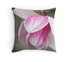 magnolia blooming  on tree Throw Pillow