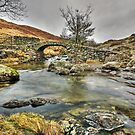 High Sweden Bridge, Scandale Beck by Steve  Liptrot