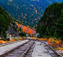 Ancient Cog Railway Tracks, Crawford Notch, White Mountains National Forest, New Hampshire by Richard VanWart