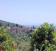 The Road to Fonterutoli by Sheri Greenberg