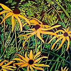 Rudbeckias by Susan Duffey