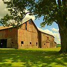 Ohio Barn, circa 1910, in Amish Country by LeeMascarello