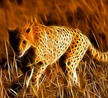 Sprinting Cheetah by Nicolas Raymond